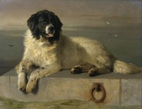 A Distinguished Member of the Humane Society (1838)