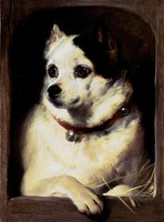 A Dog Looking Out of a Kennel (1837)