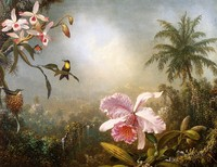 Orchids, Nesting Hummingbirds and a Butterfly (1871)