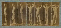 George Reynolds - Seven Photographs (1883)